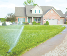 How to Conserve Water as the Mercury Rises