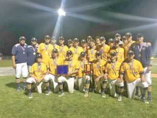 Montoursville Baseball Records Outstanding Season