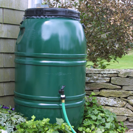 Did You Know? Rain Barrels