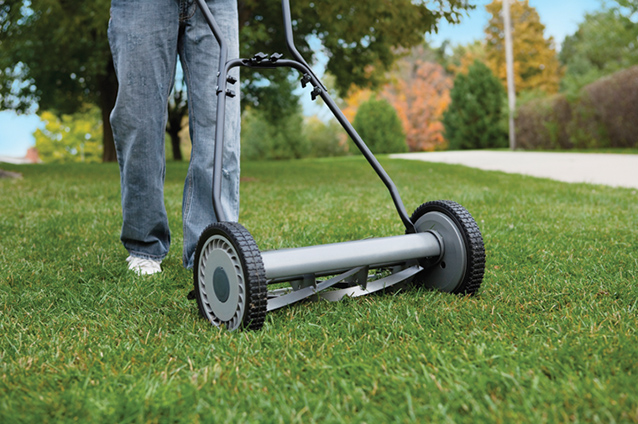 Go Green in Your Lawn and Garden This Spring