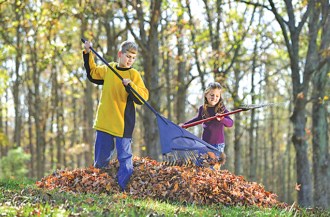 Easy Ways to Clean Up Leaves