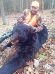Could This Be a Record Bear Season?