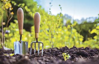Eight Garden Tools for Beginners